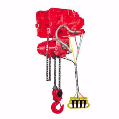 Picture for category Air Chain Hoist & Motor Trolley Combo